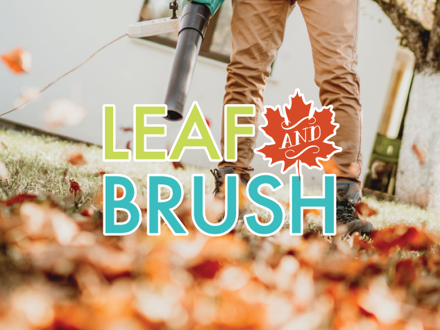 Leaf and brush collection