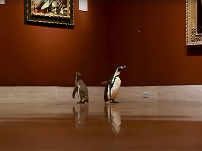Penguins at the museum