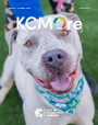KCMOre Spring/Summer 2020 cover thumbnail